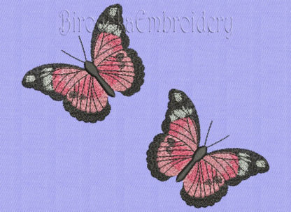 Butterfly embroidery pattern machine embroidery designs